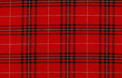 Benson Red Plaid fabric
