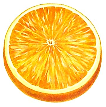 Orange+fruit+art